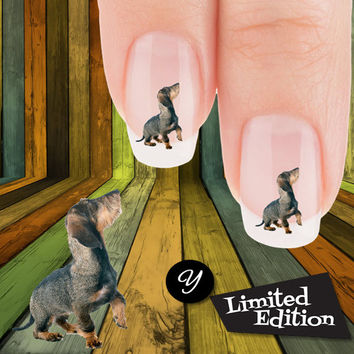 Posin Rosin Dachshund Nail Art Decals( NOW 50% MORE FREE)