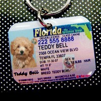 Florida Driver License pet photo ID tag by id4pet on Etsy