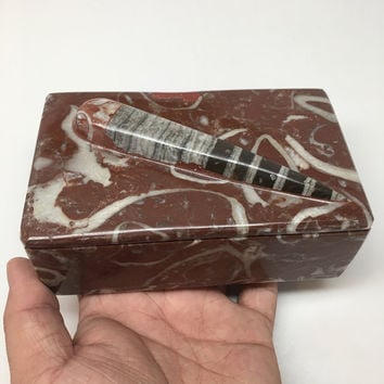 "678g, 5""x3""x2.2"" Rectangular Fossils Ammonite Red Jewelry Box @Morocco, MF632"