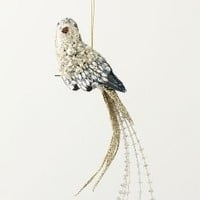 Crystalline Cockatoo Ornament - Anthropologie.com