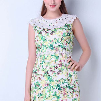 Round Collar Lace Floral Print Mini Sundress