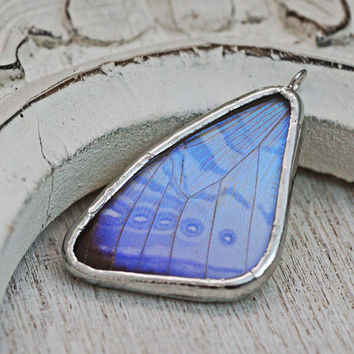 Real Pearl Morpho Butterfly Wing Necklace  sulkowski