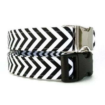 Striped Dog Collar - Black and White Chevron - Nickel Hardware