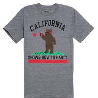 Riot Society Cali Bear Triblend T-Shirt - Mens Tee - Grey