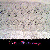Seed Stitch and Lace Blanket