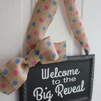 Gender Reveal Sign Hanging Painted or Chalkboard Pink or Blue Decoration - Welcome to the Big Reveal Pink and Blue Polka Dot