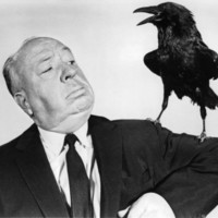 Alfred Hitchcock - The Birds Photo at AllPosters.com