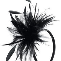Narrow Feather Spray On Band at Accessorize