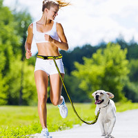 Hands Free Elastic Dog Leash With Adjustable Waist Belt For Running, Hiking, Jogging and Walking