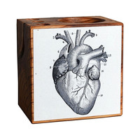 Cardiac Kid Desk Caddy