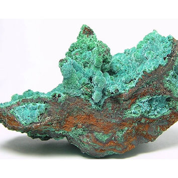 "Blue Rosasite with Green Malachite Fuzzy Druzy Rare Botryoidal Crystals Mineral Specimen from Mexico mined in the 1980's ""The Ark"""