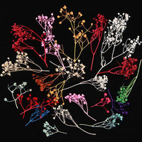 10 Colors 3D Real Dried Babysbreath Flower Decoration For UV Gel Nail Art Tips