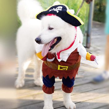 Top Pirate Outfit For Dog
