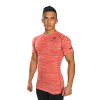 GymShark Fit Seamless T-Shirt - Ember T-shirts | GymShark International | Be a visionary.