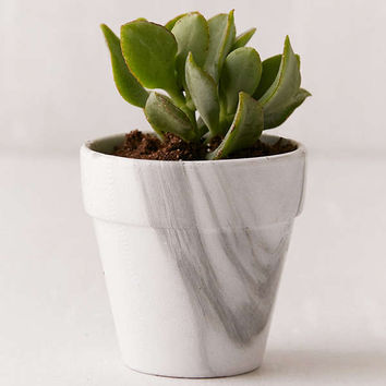 Marble Planter | Urban Outfitters
