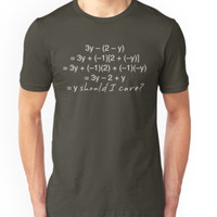'Math Algebra Why Should I Care Funny' T-Shirt by ironydesigns