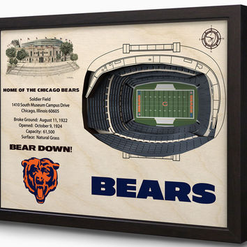 NFL Chicago Bears Football 3D Stadium View Wall Art Soldier Field