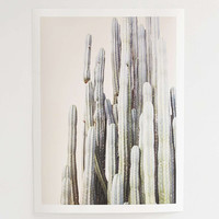Wilder California Summer Cactus Art Print - Urban Outfitters