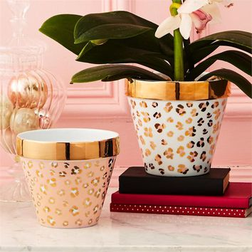 Leopard Print Planters Pink or White