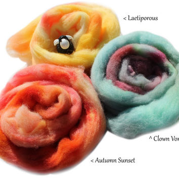 Learn to Spin Kit - Drop Spindle - Top or Bottom Whorl - 1 oz  Hand Dyed Southdown Wool  - Spin Your Own Yarn