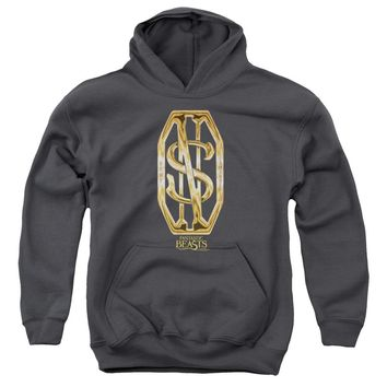 Fantastic Beasts - Scamander Monogram Youth Pull Over Hoodie