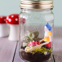 Little Gnome Fact DIY Terrarium | Mod Retro Vintage Toys | ModCloth.com