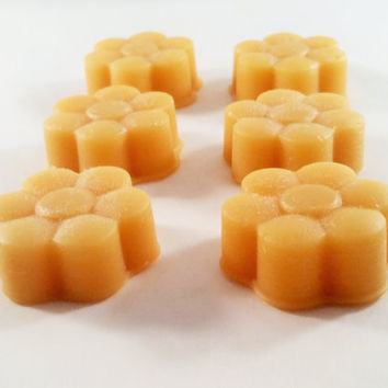 Vanilla Passion Highly Scented Wax Melts (6 pack) - Wax Tarts - Home Fragrance - Hand Poured - Wax Cubes - Candle Melt - Strong Scent