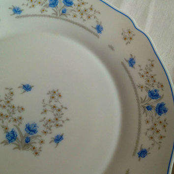 Arc French Arcopal - Sandwich Plate - Dinner Plate - Milk Glass - Blue Flowers. VBB125