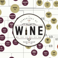 The Genealogy of Wine