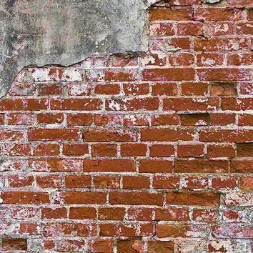 Grunge Brick Wall Red Printed Photo Background / 147