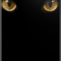Cat Eyes iPhone  iPod Cases