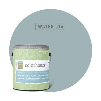 Paint by Colorhouse WATER .04