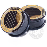 Acoustic Guitar Plugs - Image Plugs
