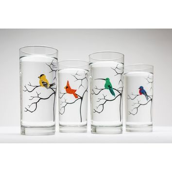 Colorful Birds Glassware - Set of 4 Everyday Water Glasses