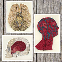 3 Anatomic Quilling Posters depicting the systems of the human head, Doctor Decor Print, Color anatomic illustration, Paper art