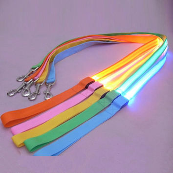 LED Pet Cat Dog LED Leash Safety Glow Leash Flashing Lighting Up