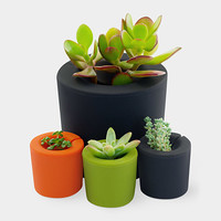Rootcup® Planters