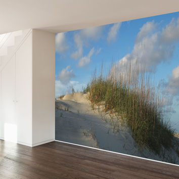 Paul Moore's Sand Dune Mural wall decal