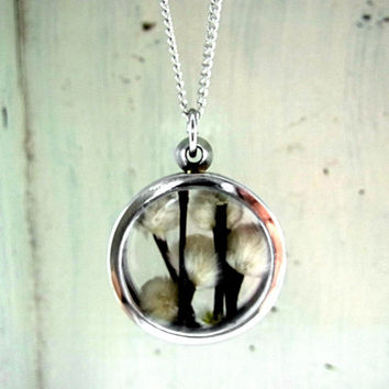 Window Locket Necklace with real dried WILLOW CATKINS