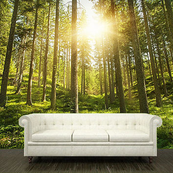 Wall MURAL leaves trees spring forest sun rays light decole poster 325x225cm)