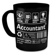 An Accountant anaccountant