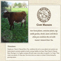 Haven Cow Manure Tea