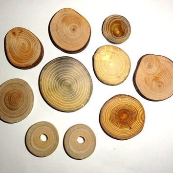 Wooden mix blanks slices, Wood mix tags, Rustic decor, Tree log coasters, Assorted branch slices, unique. Natural jewelry supplies findings.