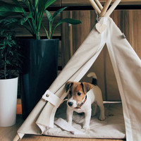 Pet teepee with poles and mat, dog teepee, cat teepee, dog house, cat house, dog bed, cat bed, dog collar, pet tent, pet tipi, pet gift