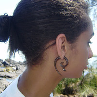 Fake Gauge Brown Wood Whaletail  Organic  Earrings Tribal Expander Split Anela Hawaii
