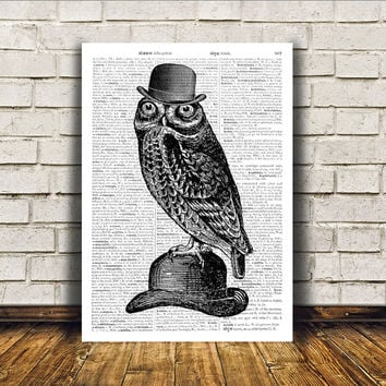 Owl poster Modern decor Bird art Dictionary print RTA399