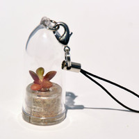 Pinky Rose - Plant Terrarium Necklace Live Succulent Flower Necklace - Tiny Transparent Capsule Flower - Boo-Boo Plant