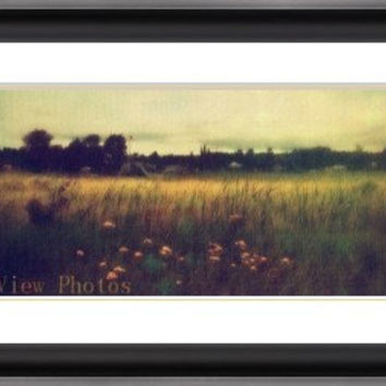 Photo of yellow flowers , photo of flowers, landscape photograph, sea grasses , wetlands,flowers and grasses, digitally enhanced photos, art