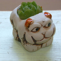 Vintage Pug Planter, Tiny Succulent Planter, Kitsch Doggie Pottery