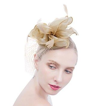 Felizhouse Flower Feather Fascinator Hats for Women Party Derby WHeadband Clip
